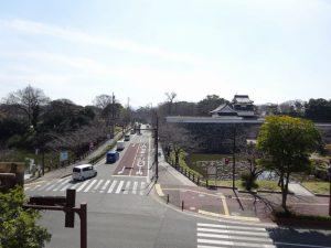 【諌山ビル】お花見最前線