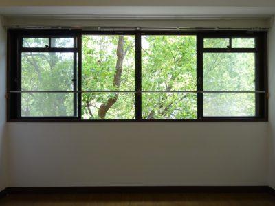 【アルマデ高宮】緑のカーテン